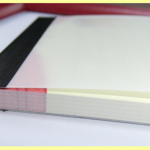 《王レベ》アニマルメモ帳