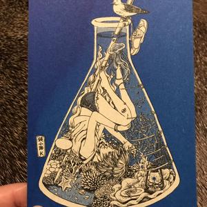 ポストカード【藻類の貸部屋】
