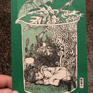 ポストカード【シダ植物の貸部屋】