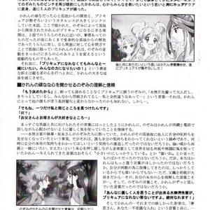 Yes!プリキュア5&Yes!プリキュア5GoGo を熱く語る本