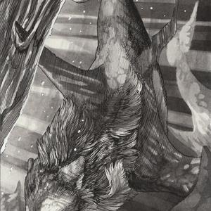 「鯱狼」原画