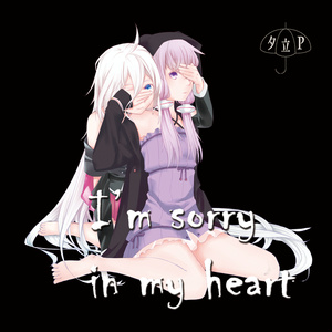 I'm sorry in my heart(CD版)