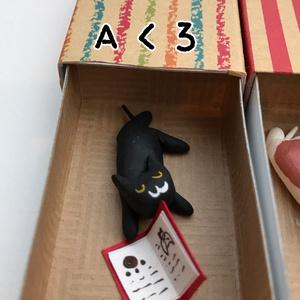 ネコさん おやすみBOX