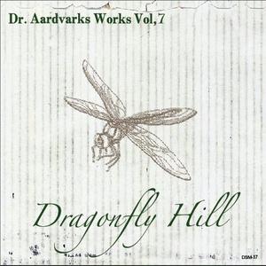 転がるようなギター・インストロック!Dragonfly Hill