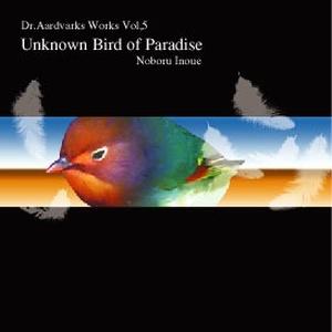 ハードなインストギター〜メロディアスな曲まで…Unknown Bird of Paradise