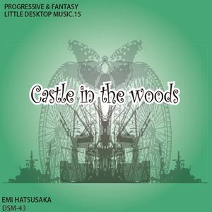 変拍子 シンセ インストロック Castle in the woods