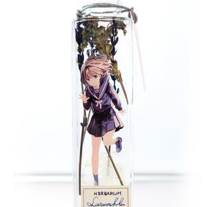 植物標本少女 ハーバリウム ラベンダー