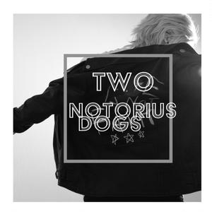「TWO NOTORIUS DOGS」ヒプマイ I.YAMADA/S.AOHITSUGI CosplayPhotobook