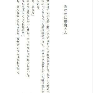 睡魔という仕事【郵送対応品☆送料込】