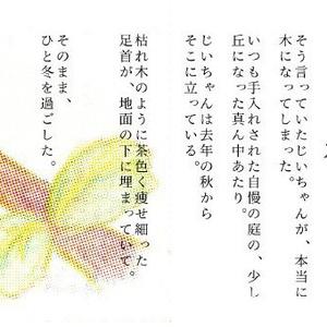 じいちゃんの木(折本 14)