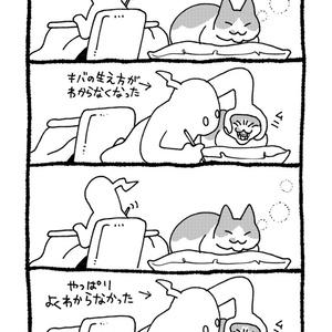 憂鬱な猫遊び