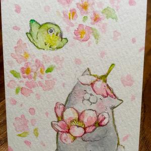 ATCボード水彩原画桜
