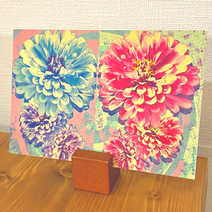 ポストカード「twin flowers」