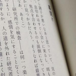 【刀使ノ巫女×刀剣乱舞】ゆめうつつでティータイム