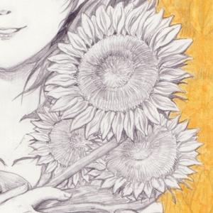 (アナログ原画) ハナゾノ  ー 向日葵 ー