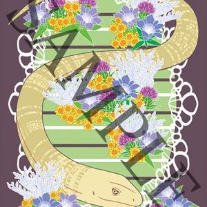 爬虫類ポストカード
