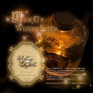 〈送料無料〉「Wishing Bottle lamp」