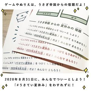 【宿題付き】うさぎ帝国 うさていぴかぴかノート 3種セット【販売期間:8/8〜8/19】