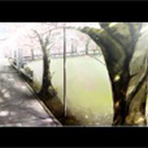 【ドリィムシリーズ】スプリング・メロウ