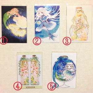 【FUYUKO】ポストカード
