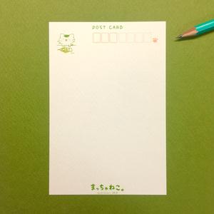 まっちゃねこ。ポストカード【でんしこうさく】