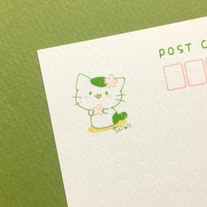 まっちゃねこ。ポストカード【さくら】