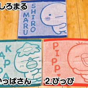 【新作】キャラクターハンドタオル3種