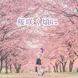 桜咲く頃に(間桐桜写真集)
