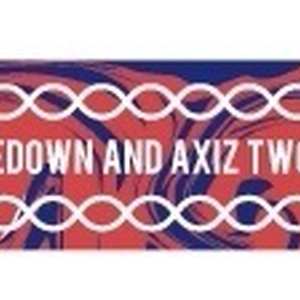 DOPEDOWN AND AXIZ TWO MAN LIVE【D'N'A】限定シリコンバンド