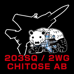 航空自衛隊・第203飛行隊 コースター