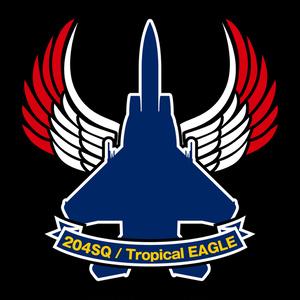 航空自衛隊・第204飛行隊 コースター
