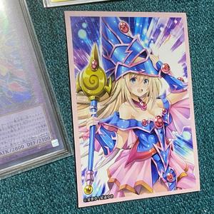 遊戯王OCG ブラックマジシャンズ カードスリーブVer.2