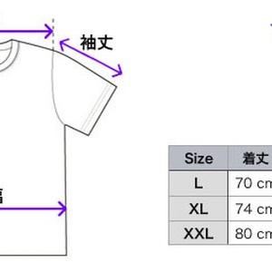 フェイトTシャツ
