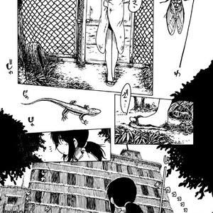 口笛未遂Vol.5『西日の水』 PDFver.