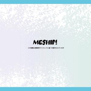 MESHIP!