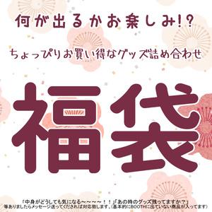 福袋(ぷち)