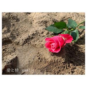 ダウンロード版「愛と情」