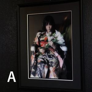Dollhouse Noah × 七菜乃  写真作品『病院坂の首縊りの家』
