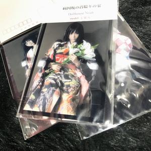 Dollhouse Noah × 七菜乃 ポストカードセット