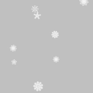 手帳型Androidケース/ストラップホールなし/冬