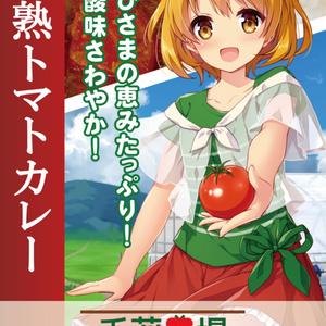 完熟トマトカレー(30個セット 送料無料)