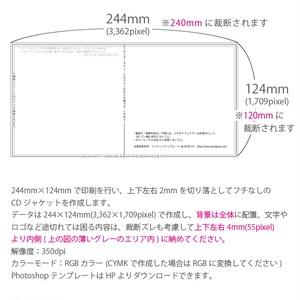 CDジャケット4P(24×12cm)【片面印刷】