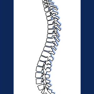 背骨のシンプルタペストリー