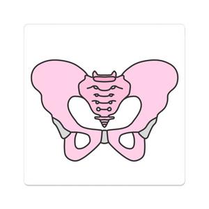 骨盤(女性)型アクリルバッジ
