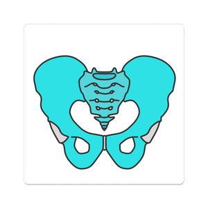 骨盤(男性)型アクリルバッジ