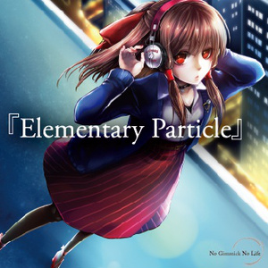 Elementary Particle