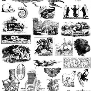 中世風素材「生き物」30種類その2