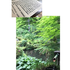 京都旅行写真集