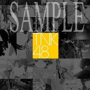 合同画集『TNK48』(完売)