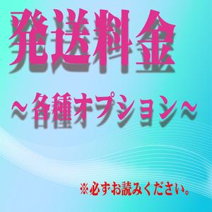 複数購入&送料 【各種オプション】